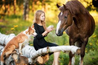 Betriebshaftpflicht Tierphysiotherapie