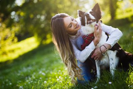 Betriebshaftpflicht Tierpsychologie